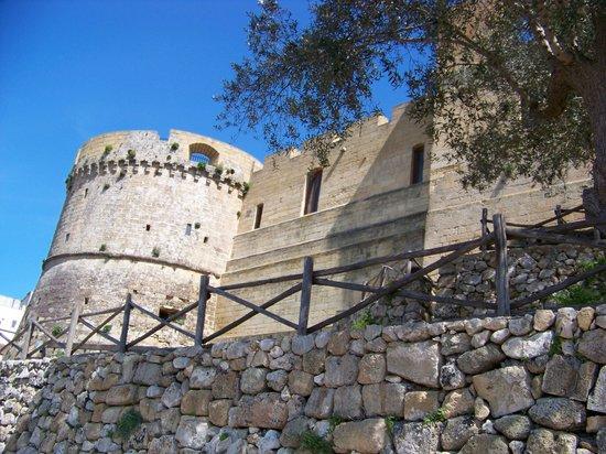 La Rosa Antica: In castello di Castro