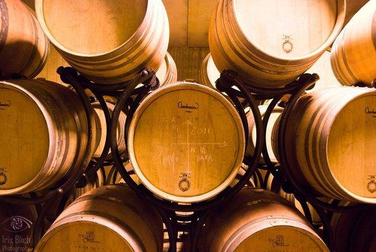 Monte Vibiano Vecchio, Ιταλία: Wine barrels