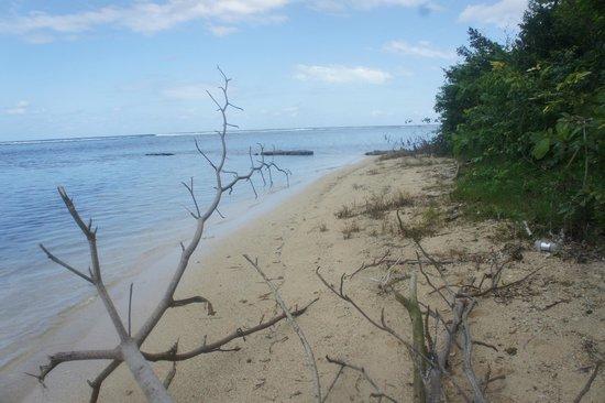 The beach on Navy Island