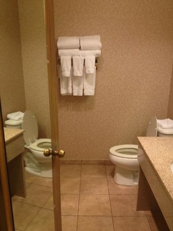 ريد لايون هوتل ريدينج: bathroom