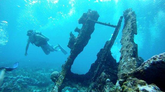 Felipe Diving Center: Maxi