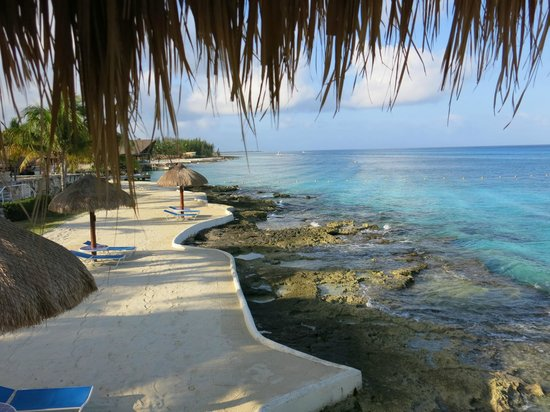 Presidente Inter-Continental Cozumel Resort & Spa: Part of beach area off reef rooms--stunning!