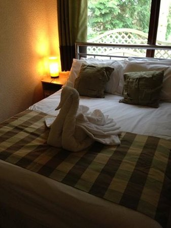Rocklands Lodges: beautiful towels in swan shape!