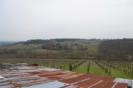 Château Feely照片
