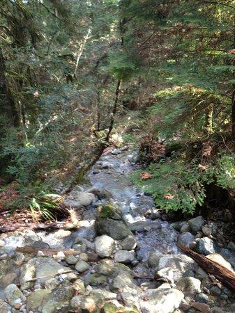 Baden-Powell Trail: Waterfall and creek crossed by bridge