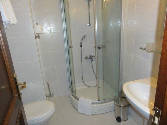 Elfida Suites: Shower room