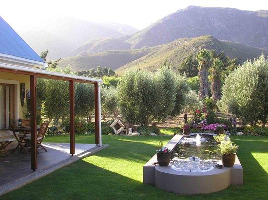 Mirihof Olive Guest Farm : Courtyard