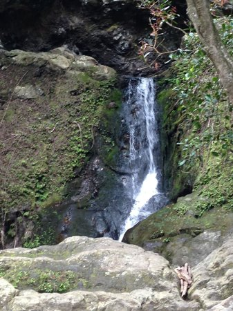 Maui Hiking Safaris Hiking Tours: Maui Waterfall
