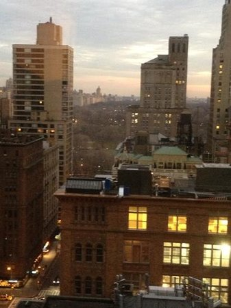 Wellington Hotel: view of Central Park. amazing.