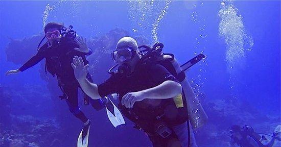 El Pulpo Divers: our dive