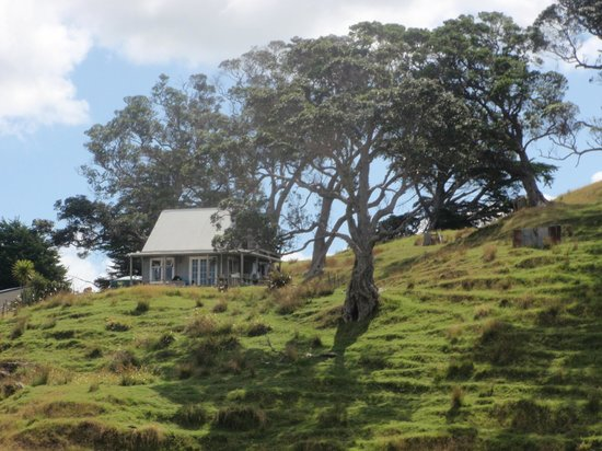 Pakiri Beach Horse Rides - Day Tours: A cute little house we came across during our trek
