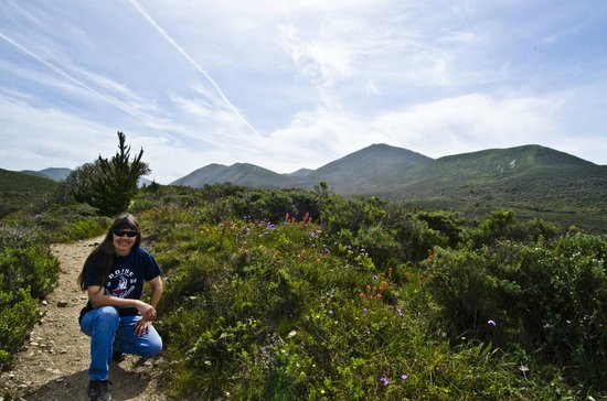 Montana de Oro State Park: Wildflower hike