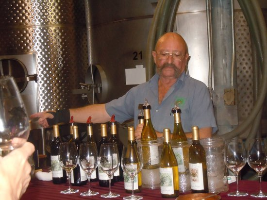 Hill Country Express Wine Trail Tours