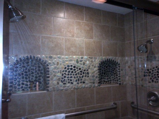 Stardust Lodge: Dual shower