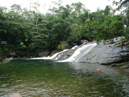 Atlantic Forest South-East Reserves : Cachoeira do Paraiso