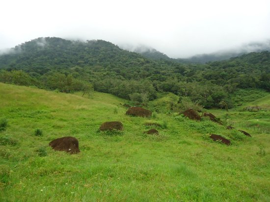 Brasilia, DF: Itingucu Reserve