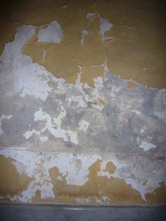 Emily Alhambra Hostal : Humidity