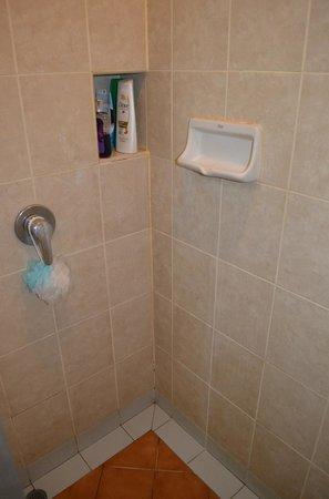 P&R Residence: Shower