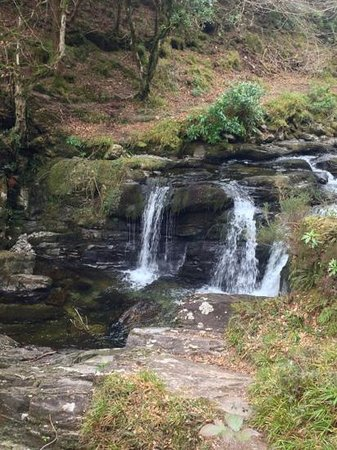 Muckross Park Hotel & Spa: torc waterfall
