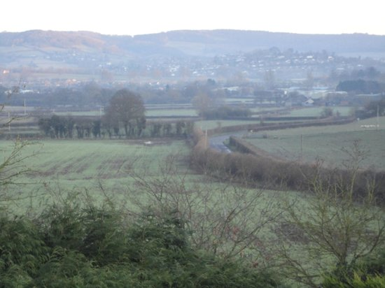 Redhill Grange Bed and Breakfast: View from Bedroom