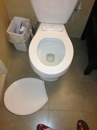 Pointe Plaza Hotel: Toilet seat came off on the 2nd day