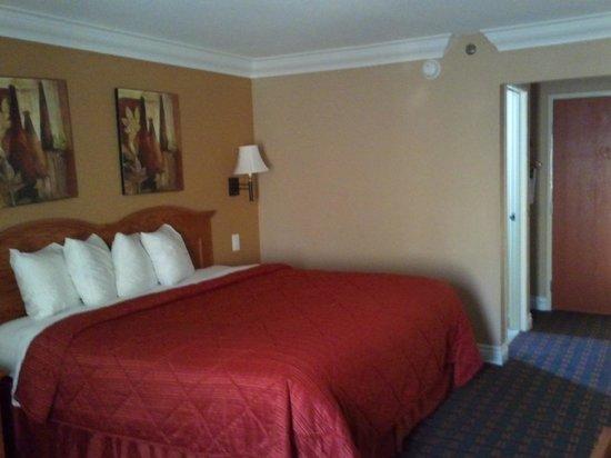 Quality Inn & Suites Atlanta Airport South: Quality Inn Room