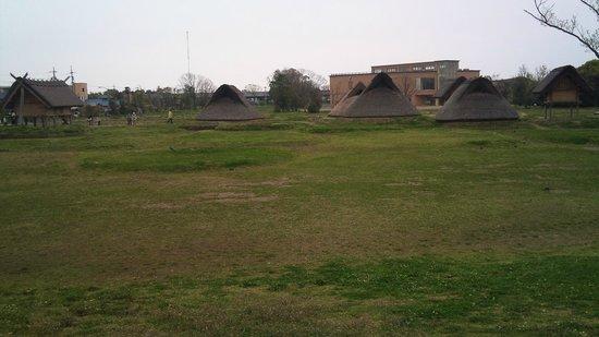Toro Park: 奥が博物館