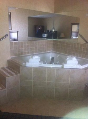 Quality Inn & Suites Coldwater: whirlpool