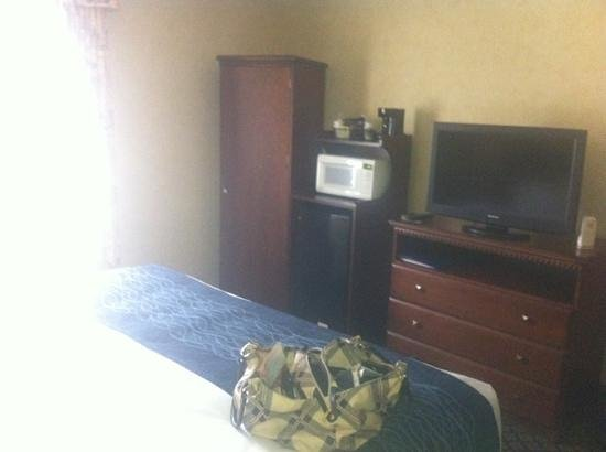 Quality Inn & Suites Coldwater: mic and fridge. very small tv.