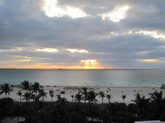 Royal Palm South Beach Miami, A Tribute Portfolio Resort: Sunrise from our balcony at the James Royal Palm