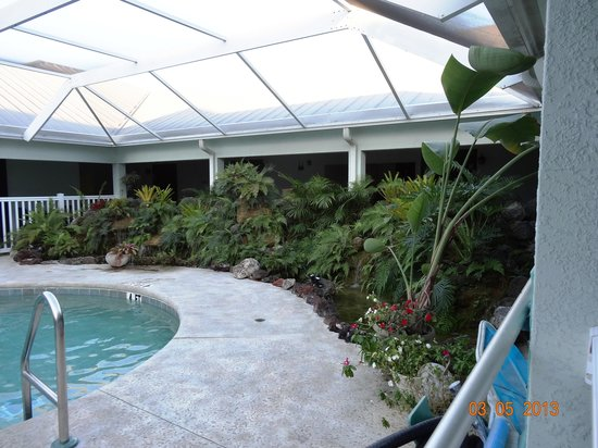 Ivey House : The pool enclosure