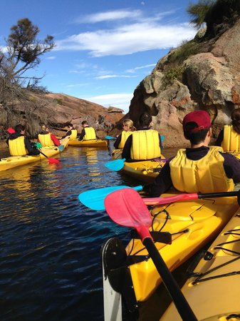 Freycinet Adventures: Up close to nature