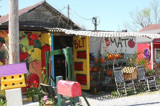 The Tomato Place: Don't let first impressions fool you!