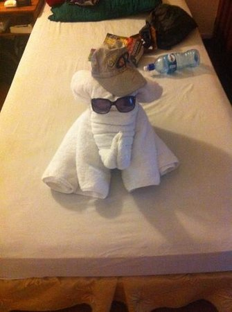 Hotel El Tajalin: the elephant towel