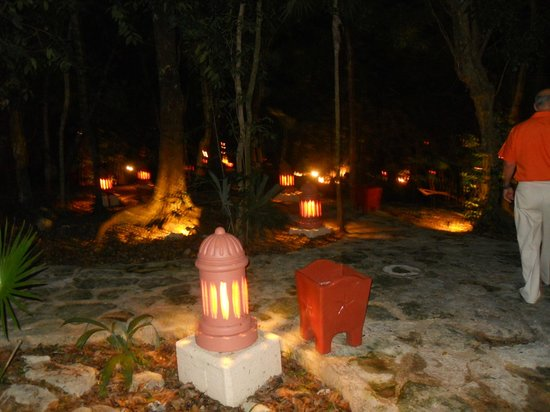Iberostar Quetzal Playacar: Site - aménagement dans la forêt