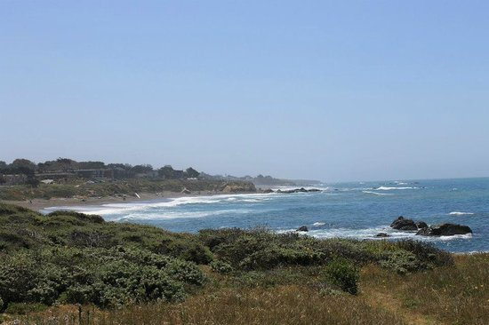 Cambria Shores Inn: Taking a walk on the path across the street