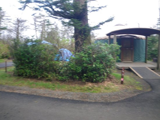 Cape Lookout State Park: Outside Yurt