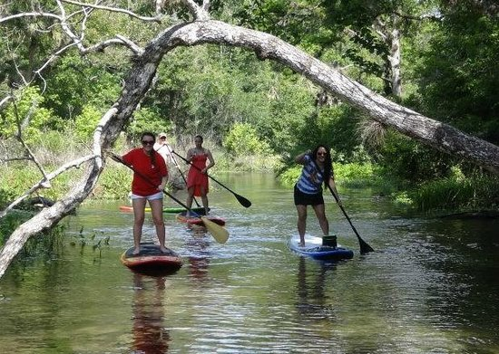 Paddleboard Orlando: Hooked on SUP