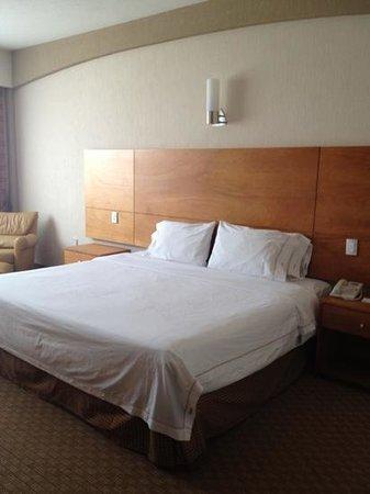 Holiday Inn Express San Luis Potosi: Habitación king size