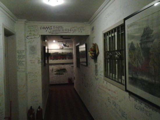 Happy Dragon Hostel: the special wall