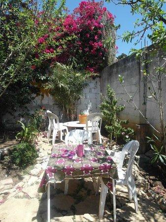 Hostal Posada Mi Casa: El jardin