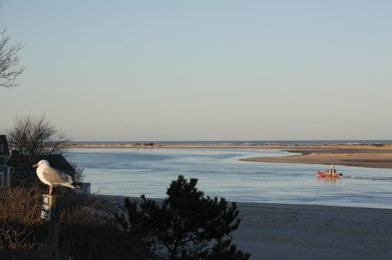 Carriage House Inn: Chatham Lighthouse Beach