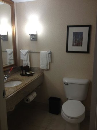 Columbus Marriott: bathroom