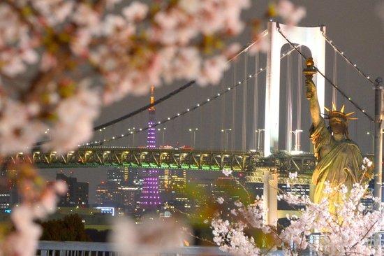 Odaiba: Cherry Blossom, Rainbow Bridge, Tokyo Tower, Tokyo's version of Statue of Liberty
