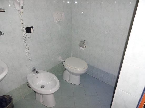 Hotel Palazzuolo: トイレなど