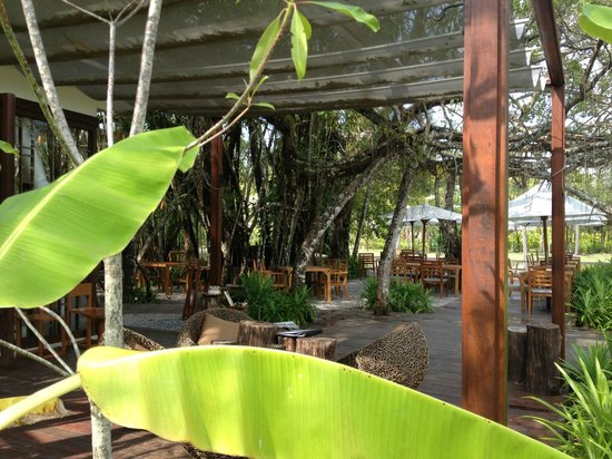 The Sarojin: Ficus restaurant where Breakfast is held