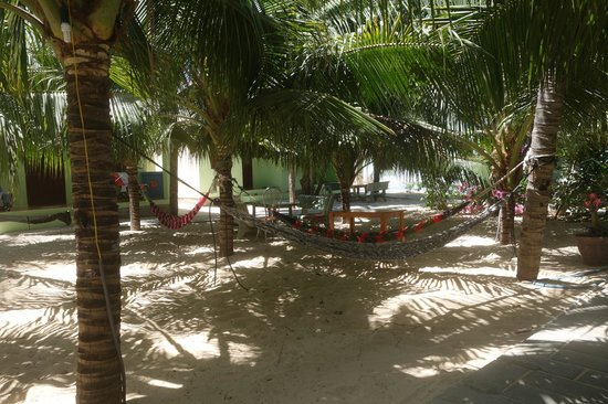 Cocosand Hotel: Hammock time!
