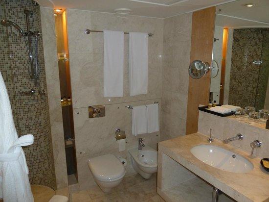 Hyatt Regency Dubai: Shower cubicle on the left of the picture