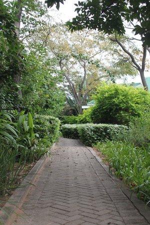 Perry's Bridge Hollow: Gardens