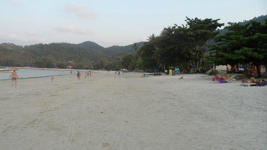 Koh Phangan Dreamland Resort: Der Strandbereich